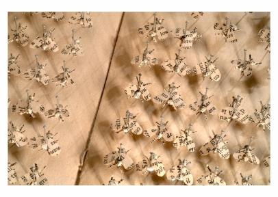 23 Pattes de mouches
