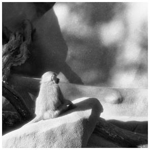 12 © B. Runtz