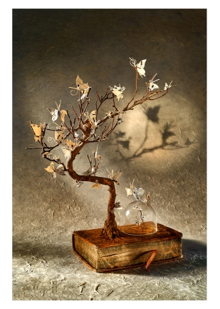 54 L'arbre aux papillons - © B. Runtz