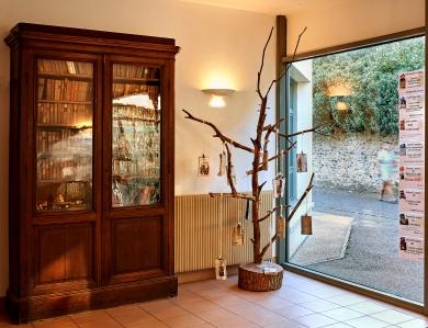 19 L'arbre aux livres suspendus Médiathèque de Vert-le-Grand - © B. Runtz