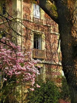 13 Une fenêtre ouverte sur le printemps - atelier du 23 mars - © B. Runtz