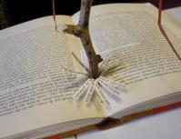 6 Chaque livre est un arbre - Médiathèque de Vélizy-Villacoublay - © B. Runtz