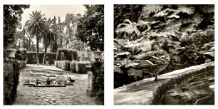 © B. Runtz / En el jardín, todos los jardines - En equilibrio al borde de un sueño