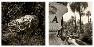 © B. Runtz / El monstruo te está esperando - en el fondo del jardín.